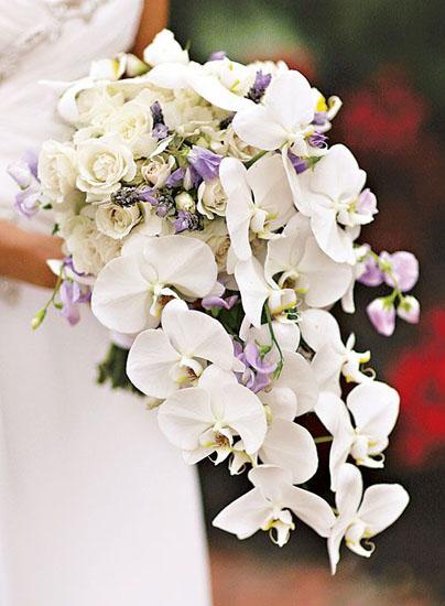 Buchete de mireasa din flori albe de orhidee
