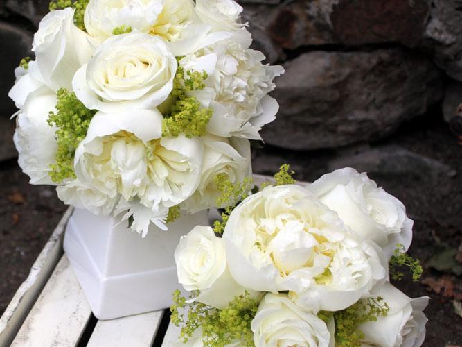 Buchete de mireasa din trandafiri si bujori albi