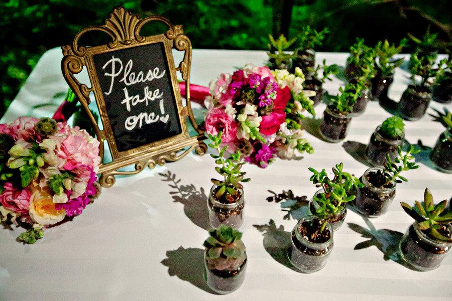 flori in ghiveci marturii de nunta